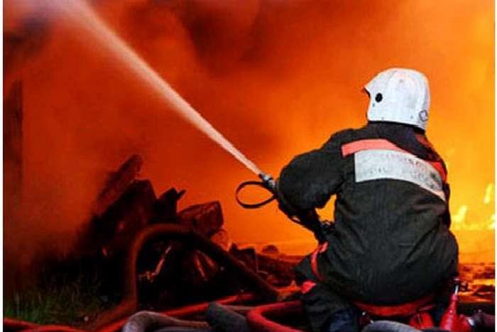 Лесные пожары в россии (лето 2010) - фотография 80