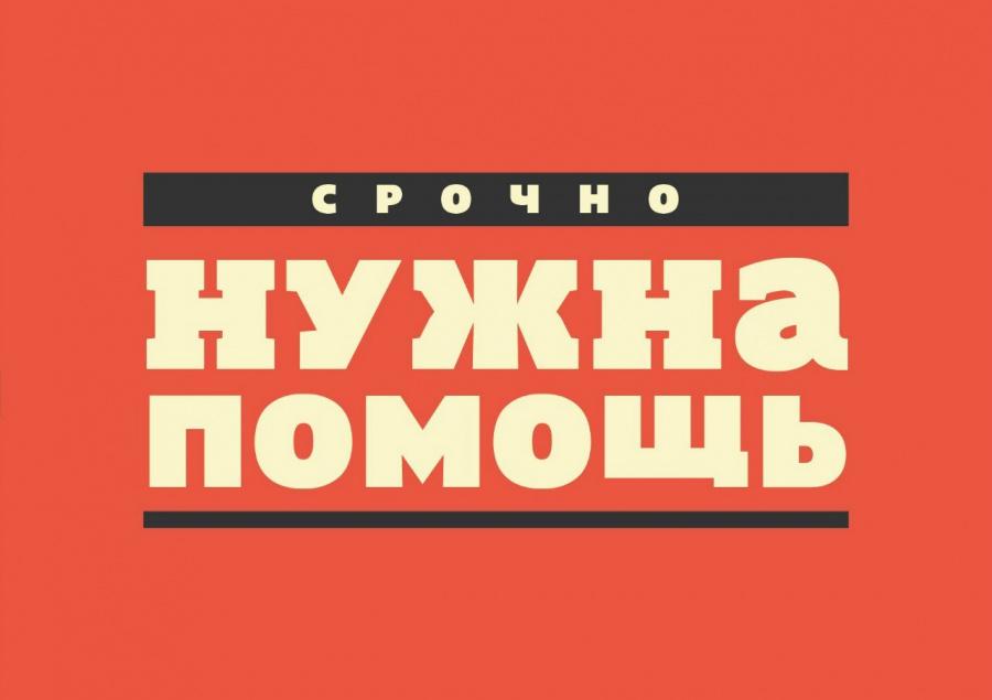 В Наро-Фоминске собирают добровольцев на поиски 64-летней женщины