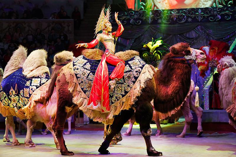 Купить билет на новогоднюю елку в цирк на вернадском афиша театры москва 27 сентября